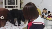 75宠物购-桀骜的丸子的直播