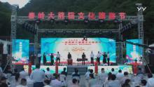 2020秦岭大熊猫文化旅游节