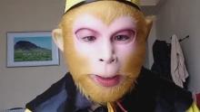 京城猴哥带你看中国马都